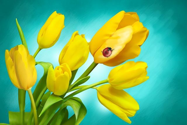 tulipány s beruškou