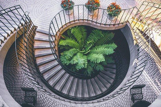 květiny u schodiště